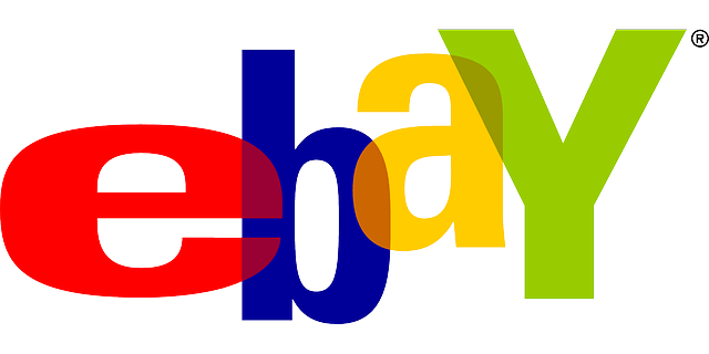 The Online Auction - Ebay