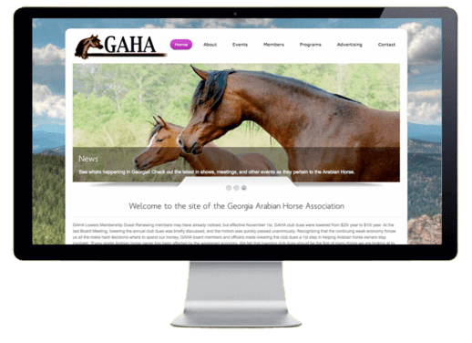 Georgia Arabian Horse Assocaition