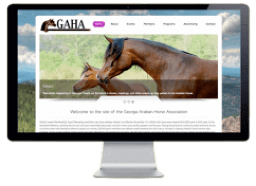 Georgia Arabian Horse Association